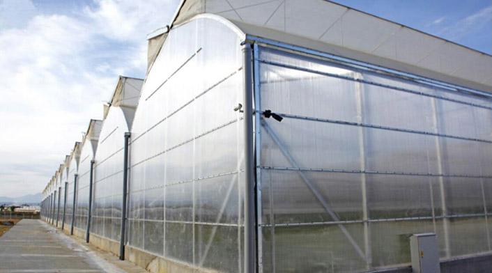 Строительство промышленных и фермерских теплиц